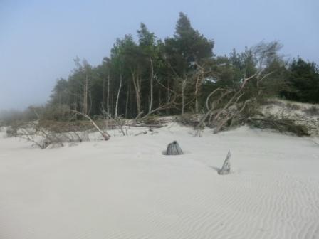 Leba Strand 2